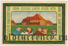 Зиденбург (Siedenburg), 75 пфеннингов 1921 года. Вар. 3