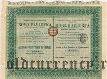 Каменноугольное и Металлургическое Общество Ново-Павловка, акция на 100 франков 1898 года